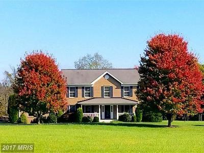 Loudoun Single Family Home For Sale: 19190 Walsh Farm Lane