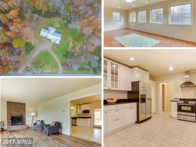Loudoun Single Family Home For Sale: 43160 Evans Pond Road