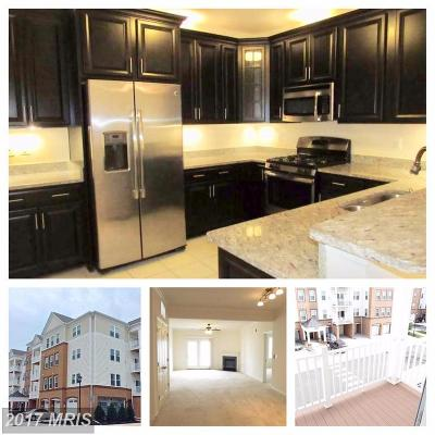 Aldie Condo For Sale: 24661 Woolly Mammoth Terrace #305