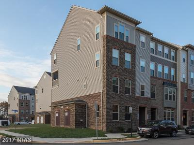 Aldie Townhouse For Sale: 25315 Gray Poplar Terrace