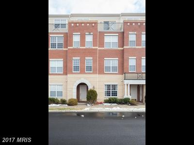 Ashburn Rental For Rent: 22646 Verde Gate Terrace
