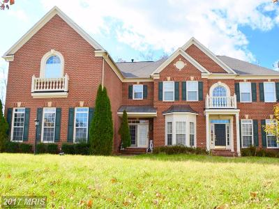 Loudoun Single Family Home For Sale: 22503 Pine Top Court