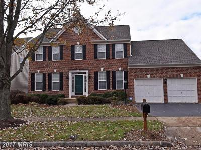 Chantilly Single Family Home For Sale: 25589 Quits Pond Court