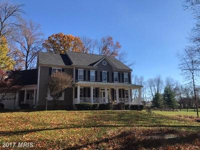 Loudoun Single Family Home For Sale: 18258 Chestnut Grove Court