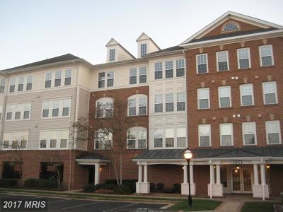 Ashburn Rental For Rent: 44475 Chamberlain Terrace #306