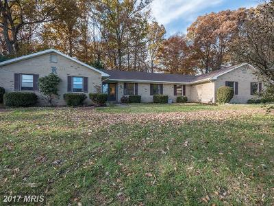 Loudoun Single Family Home For Sale: 12969 Potomac Overlook Lane