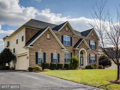 Loudoun Single Family Home For Sale: 22406 Dolomite Hills Drive