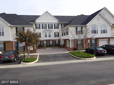 Chantilly Rental For Rent: 25340 Lake Mist Square #204
