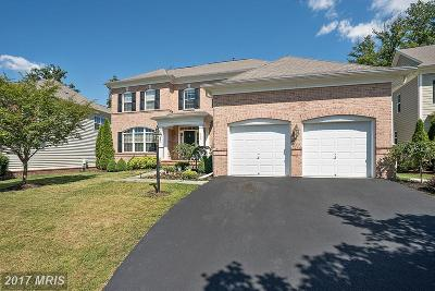 Loudoun Single Family Home For Sale: 43825 Riverpoint Drive
