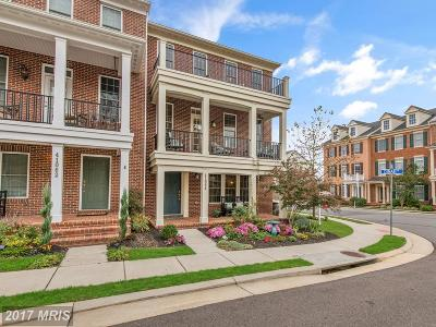 Leesburg Townhouse For Sale: 41064 Dorati Square