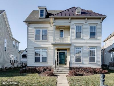 Loudoun Single Family Home For Sale: 25033 Owl Creek Drive