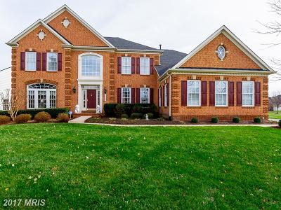 Chantilly Single Family Home For Sale: 42554 Unbridleds Song Place
