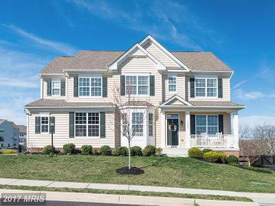 Leesburg Single Family Home For Sale: 13477 Arcadian Drive