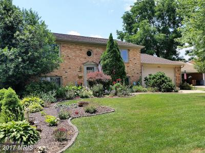Leesburg Single Family Home For Sale: 124 Belmont Drive SW