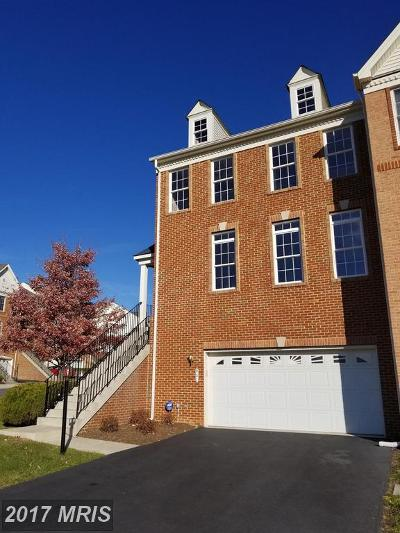 Purcellville Rental For Rent: 901 Serenity Grove Terrace
