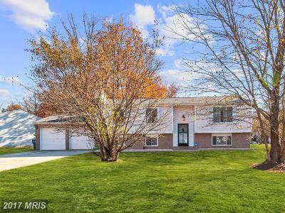 Sterling Single Family Home For Sale: 101 Almond Court