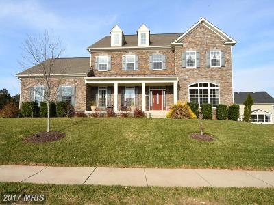 Ashburn Single Family Home For Sale: 41956 Riding Mill Place