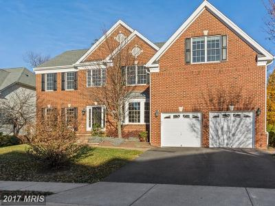 Ashburn Single Family Home For Sale: 20331 Kiawah Island Drive