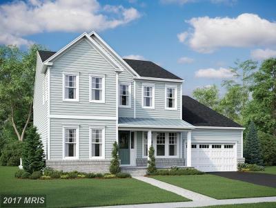 Loudoun Single Family Home For Sale: 1009 Akan Street SE