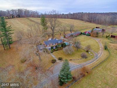Leesburg Farm For Sale: 39385 Lime Kiln Road