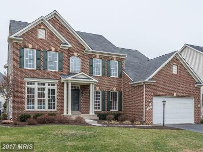Leesburg Single Family Home For Sale: 18471 Cattail Spring Drive