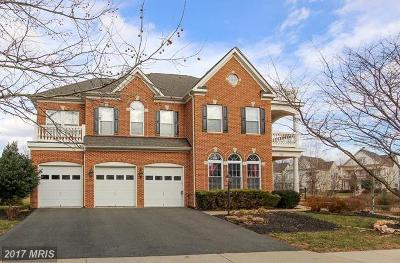 Loudoun Single Family Home For Sale: 41868 Cordgrass Circle