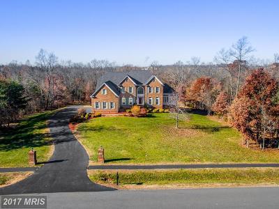 Loudoun Single Family Home For Sale: 42490 Iron Bit Place