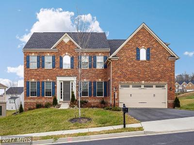 Loudoun Single Family Home For Sale: 26059 Blackberry Knoll Court