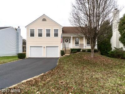 Loudoun Single Family Home For Sale: 4 Dudley Court