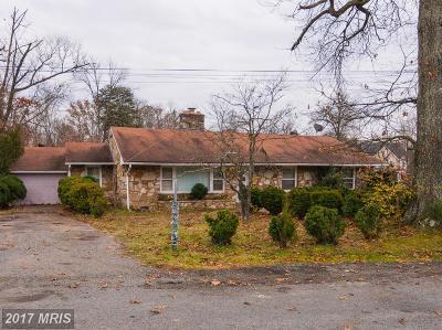 Loudoun Single Family Home For Sale: 43358 Mountain View Drive