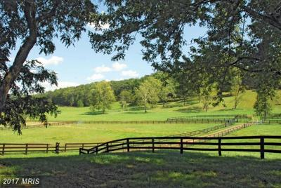 Residential Lots & Land For Sale: 23901 Fred Warren Lane