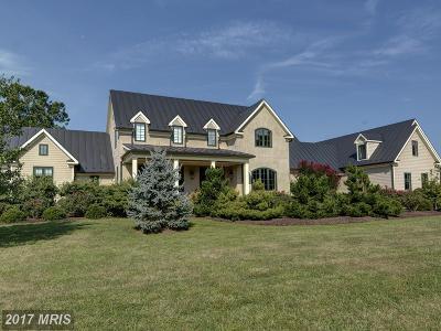 Loudoun Farm For Sale: 21953 Willisville Road