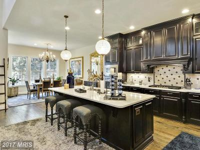 Aldie Single Family Home For Sale: 41495 Carriage Horse Drive