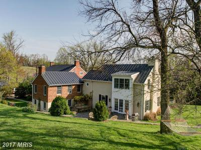 Bluemont, Paris, Middleburg, Upperville, Hamilton, Hillsboro, Lovettsville, Paeonian Springs, Purcellville, Round Hill, Waterford Single Family Home For Sale: 35741 Snake Hill Road