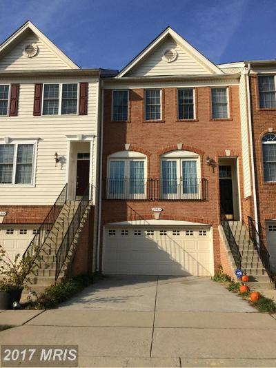 South Riding Townhouse For Sale: 25251 Nesting Square