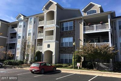 Leesburg Condo For Sale: 514 Sunset View Terrace SE #407