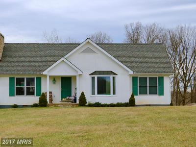 Middleburg Single Family Home For Sale: 35673 Millville Road