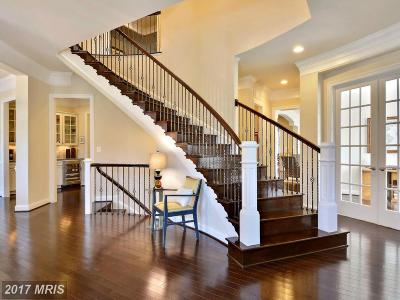Ashburn Single Family Home For Sale: 23134 Expedition Drive
