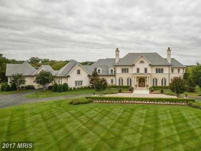 Leesburg Single Family Home For Sale: 22781 Creighton Farms Drive