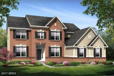 Aldie Single Family Home For Sale: Grayhaven Place