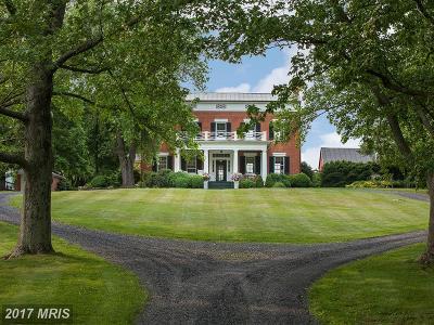 Loudoun Single Family Home For Sale: 22439 Greengarden Road