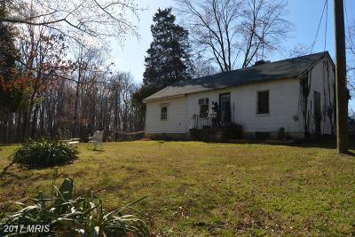 Centreville Single Family Home For Sale: 42937 Buffalo Run Lane