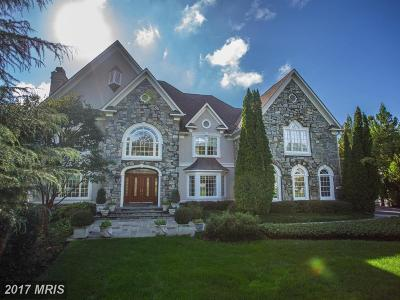 Loudoun Single Family Home For Sale: 11371 Jackrabbit Court