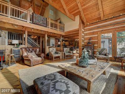 Lovettsville Single Family Home For Sale: 42503 Lovettsville Road