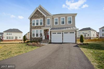 Ashburn Single Family Home For Sale: 42660 Paradise Spring Court