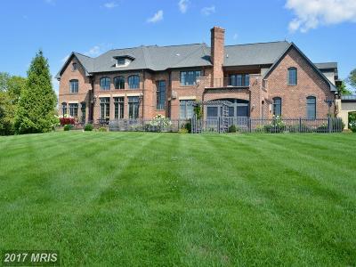 Loudoun Single Family Home For Sale: 21051 St Louis Road