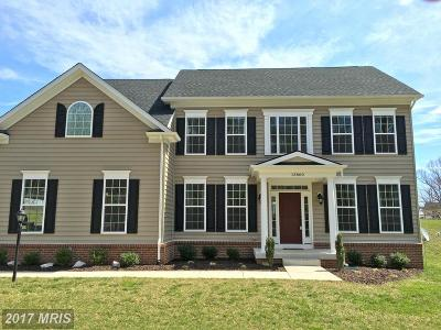 Purcellville Single Family Home For Sale: 13860 Paris Breeze Place