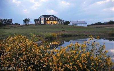 Lovettsville Single Family Home For Sale: 38651 Rickard Road