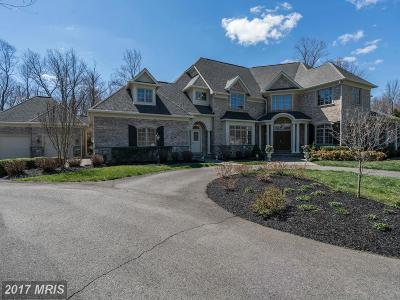 Loudoun Single Family Home For Sale: 40903 Grenata Preserve Place
