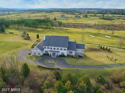 Leesburg Single Family Home For Sale: 22443 Creighton Farms Drive